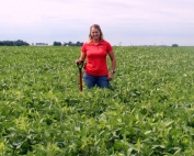 Nollman Ag Scouting and Consulting